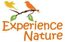 Experience Nature